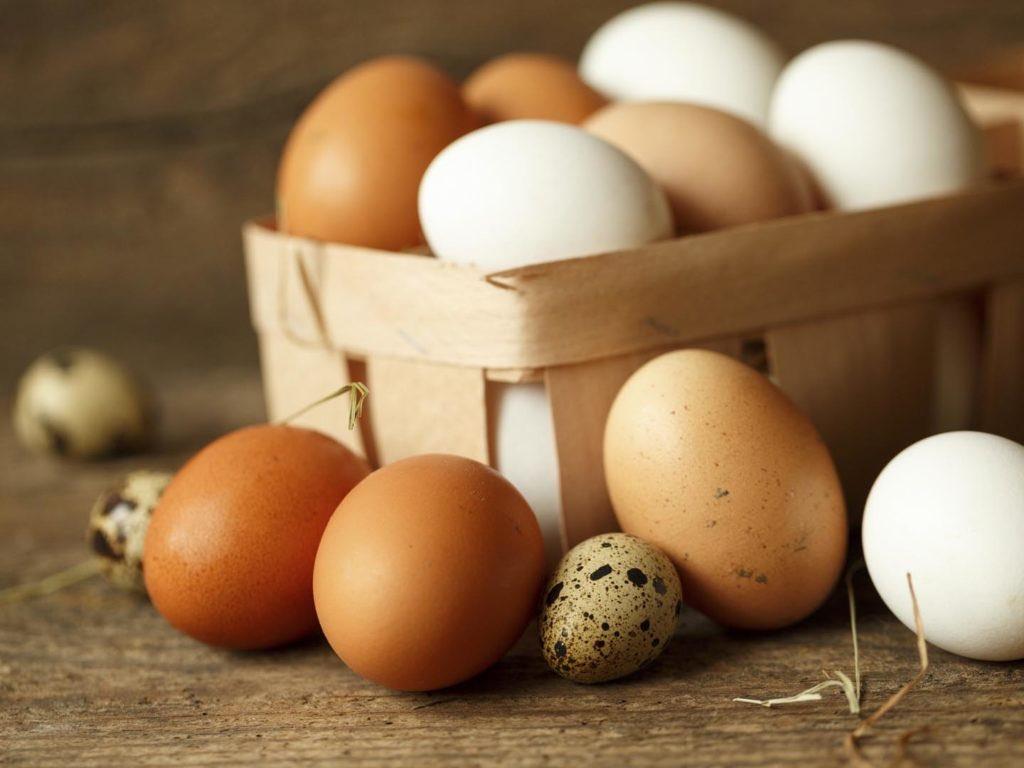 Son Derece Yanıltıcı Yumurta Endüstrisi